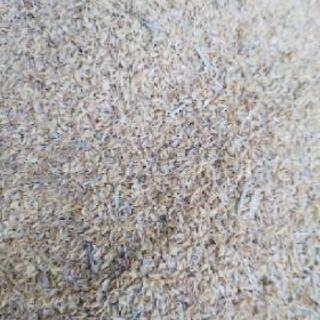 籾殻❗️期間限定❗️ - 瀬戸市