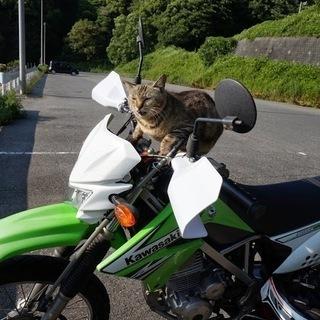 バイクの廃車手続き・無料回収 すべて無料サービス♪