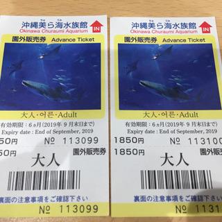沖縄美ら海水族館 入場券