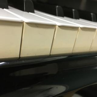 ピアノ調律、修理承ります