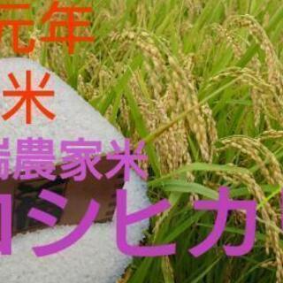 新米☆高品質☆先端農家のつくるお米 コシヒカリ