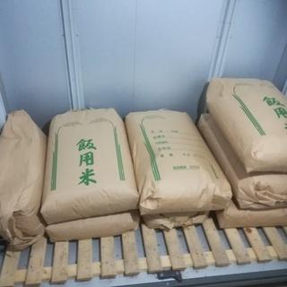 玄米古古米 京丹後産 コシヒカリ1等米30㎏