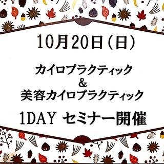 【開催】10月20日 龍ケ崎カイロプラクティック1DAY教室