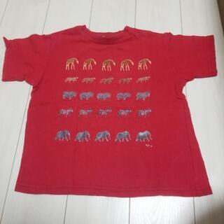 動物柄 Tシャツ スピリッツ オブ アフリカ