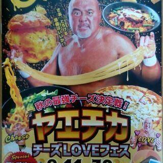 【無料0円】ヤエチカチーズLOVEフェスパンフ