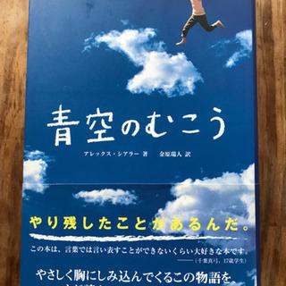 『青空のむこう』📘  著:アレックス・シアラー  (求龍堂)