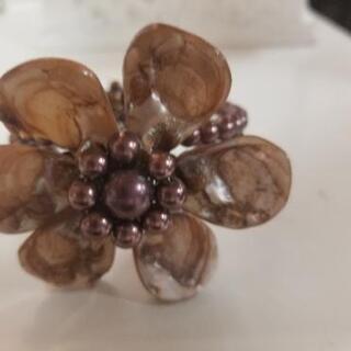 貝殻でできたブレスレットレット ブラウン