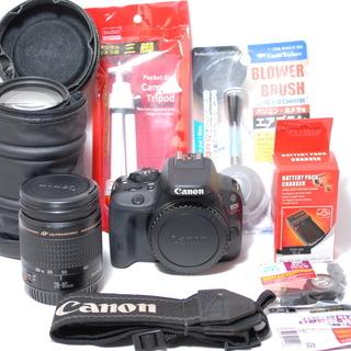 当店保証書付き Canon EOS KISS X7 標準・望遠ダ...