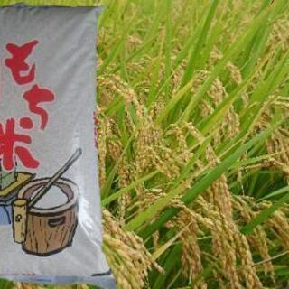 新米 高品質 もち米(こがねもち)