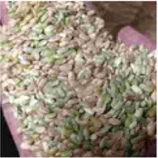 令和3年産 キヌヒカリ くず米(小米) 1kg当たり
