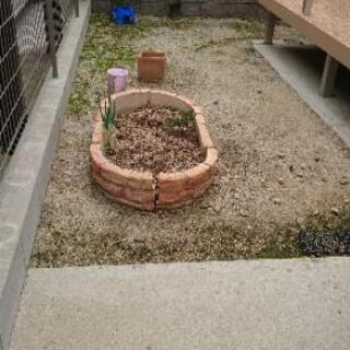 レンガ花壇 家庭菜園 畑