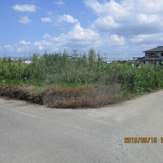 福岡、ツルの草刈、空地、格安、早い、ユンボ使用、便利屋