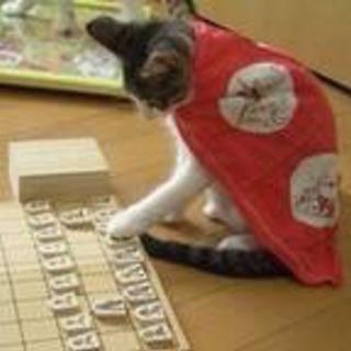 将棋対局しませんか?