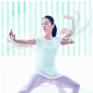 札幌初開講決定! メディカルタイチ講座(3H)太極拳チャンピオンが教えるプログラム - スポーツ