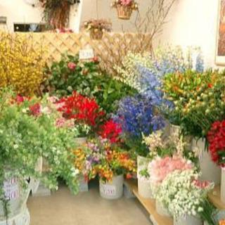 花屋さんの新鮮切り花🎶