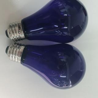 ☆新品☆ アサヒ 青色電球 2つ E26