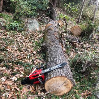 薪ストーブの薪を作るための広葉樹を探しています。