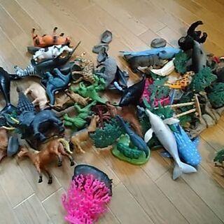 トイザらスの動物のおもちゃ
