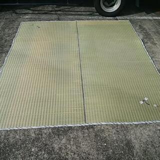 ゴザ イ草 ゴザカーペット 正方形