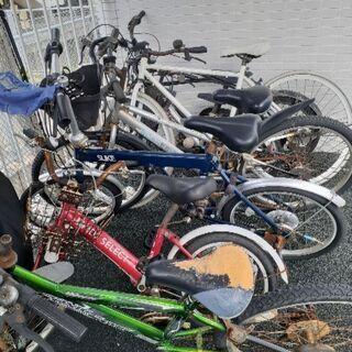 自転車貰ってください