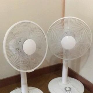 扇風機(2台)