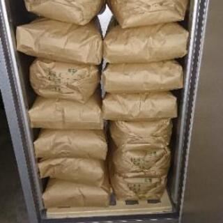 令和1年産キヌヒカリ玄米30kg