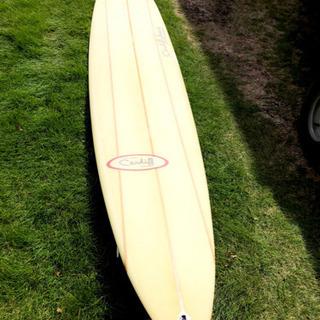 ロングボード、サーフボード、サーフィン、マリンスポーツ