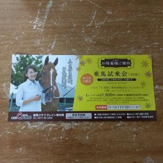 乗馬試乗会のチケット