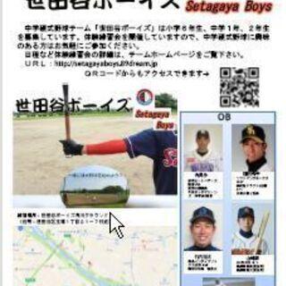 選手募集 世田谷ボーイズ(中学硬式野球)創部40年