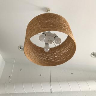 Francfranc 照明 ライト  3灯