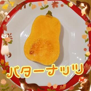 バターナッツ【よねベジ】