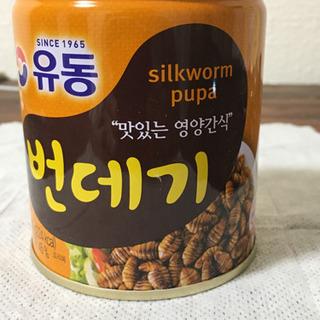 韓国の虫缶詰