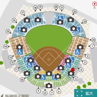 9/24(火) 阪神vs巨人 甲子園 アイビーシート 1枚 通路...