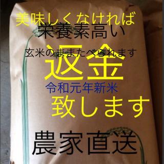 愛媛県東温市南方 新米こしひかり30㎏玄米