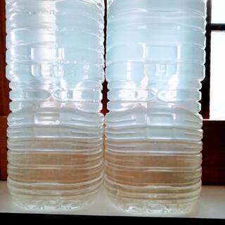 メダカの飼育水