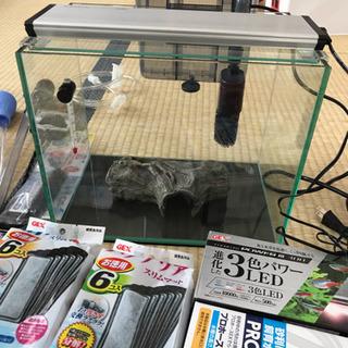 メダカ等の小型室内魚飼育セット【水槽ほか】