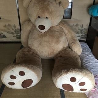 クマのぬいぐるみ 巨大