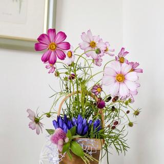 季節限定♥秋の花コスモスのアレンジメント♥