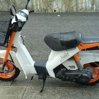 これでも スクーターです!! スズキ モレ 50 cc シート交...