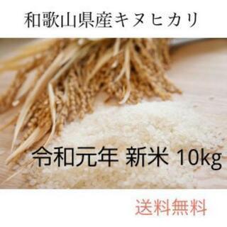 新米 10kg お米 和歌山県産 キヌヒカリ