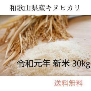 新米 30kg お米 和歌山県産 キヌヒカリ