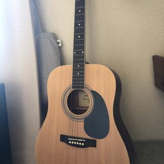HONEY BEE アコースティックギター