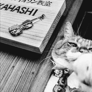 神戸とその近郊でバイオリン教えます