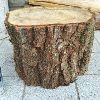 広葉樹コナラの薪割り台。丸太テーブル、丸太椅子にも。茨城県潮来市。