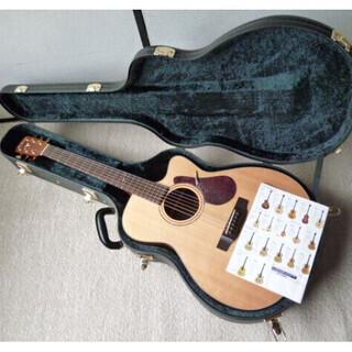 ヤイリギター YFA-65CW VS