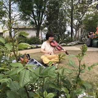 気楽に、趣味としてバイオリン初めてみませんか??☆