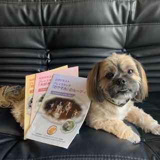 プレイズタッチ®パートナーズ・セミナー for DOG