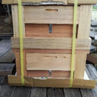 西洋蜜蜂巣箱(本箱継箱セット)