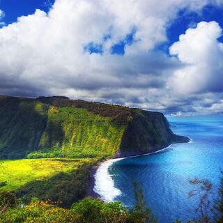 ハワイコナ エクストラファンシーを焙煎して飲んでみよう。 【コー...
