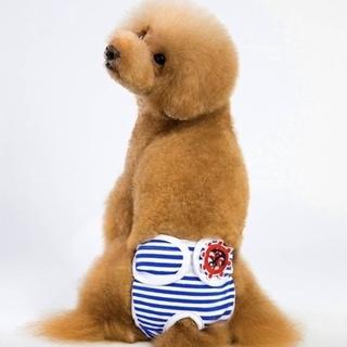 ペット用パンツ ブルー サイズL 【新品】 サニタリーパン…